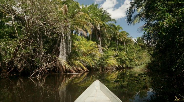 Parque-Nacional-de-Boa-Nova-e-Chapada-Diamantina