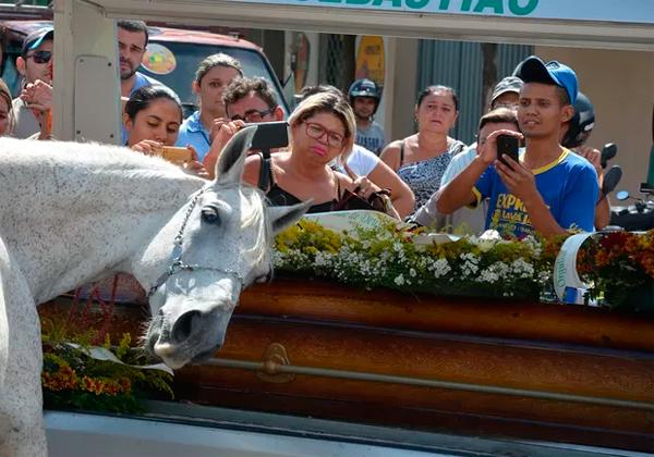 Cavalo-causa-comoo-durante-enterro-de-vaqueiro