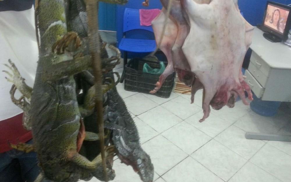 Carne-de-animais-silvestres-que-seria-comercializada-apreendida