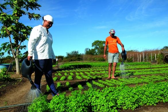 Incra-cria-trs-assentamentos-rurais-no-Litoral-Sul-e-Vale-do-Jiquiria