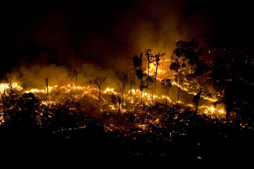Em-oito-meses-Brasil-registrou-mais-de-74-mil-focos-de-queimada