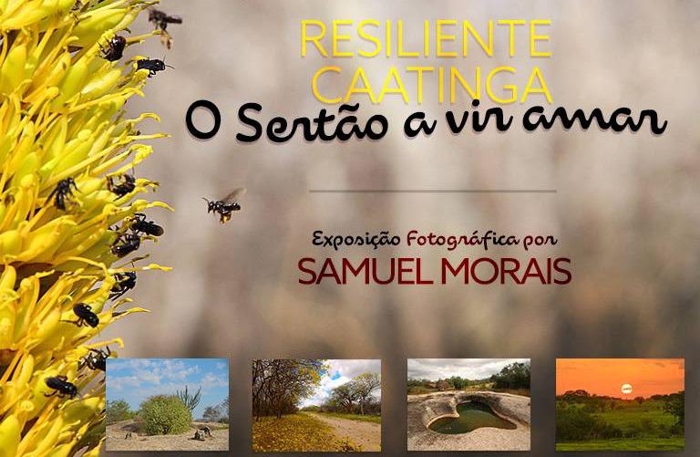 Juazeiro-recebe-Exposio-Fotogrfica-RESILIENTE-CAATINGA-O-Serto-a-vir-amar