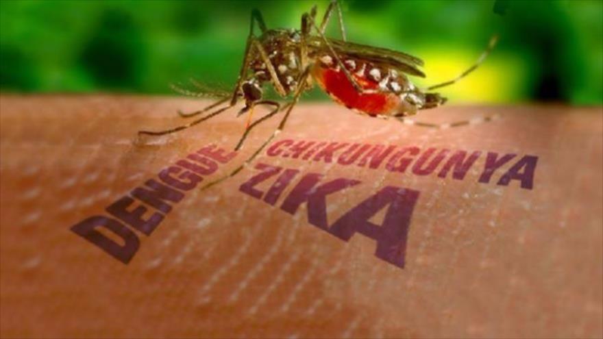 Dengue-79-cidades-da-Bahia-vivem-epidemia-da-doena