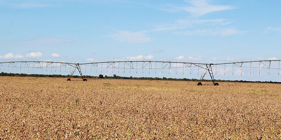 reas-irrigadas-do-Oeste-baiano-podem-aumentar-em-10-vezes