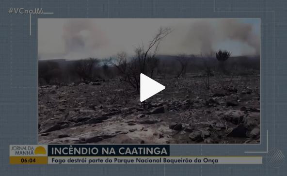 Incndio-destri-mais-de-mil-hectares-do-Parque-Nacional-Boqueiro-da-Ona