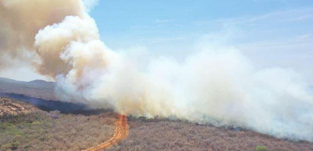 Bombeiros e brigadistas civis combatem incêndio na Serra de Uibaí