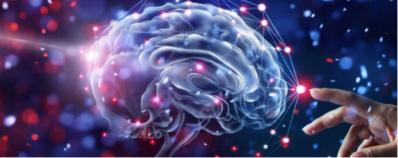 Exercício físico e neuroplasticidade: entenda a relação