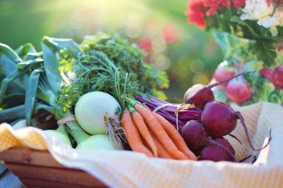 Prefeito sanciona lei que proíbe venda e uso de agrotóxicos na cidade