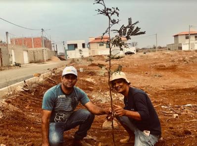 Irecê: moradores do Jardim Europa dão exemplo e iniciam plantio de mudas nativas