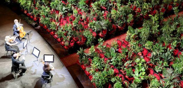 Ópera de Barcelona reabre com concerto exclusivo para plantas