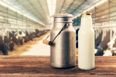 Cadeia produtiva do leite gera empregos e segue em expansão