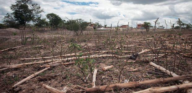 Em virtude da seca, União reconhece estado de emergência em Ibititá