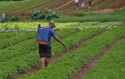 Grupo de Trabalho quer combater efeitos dos agrotóxicos na Bahia