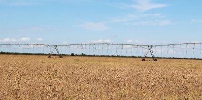 Áreas irrigadas do Oeste baiano podem aumentar em 10 vezes
