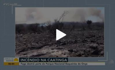 Incêndio destrói mais de mil hectares do Parque Nacional Boqueirão da Onça
