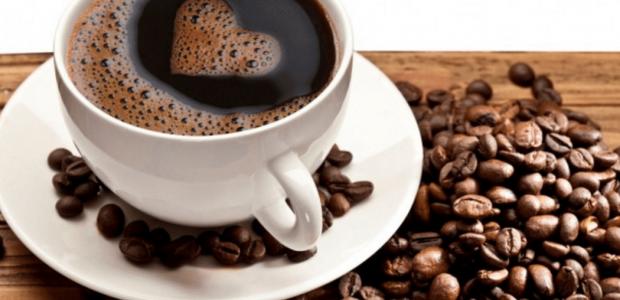 Café orgânico da Agricultura Familiar baiana ganha projeção mundial