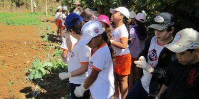 Colégio de Irecê é pioneiro na Bahia na aplicação de programa do SEBRAE