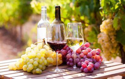 Chapada Diamantina tem primeiro Winemakers do Norte Nordeste